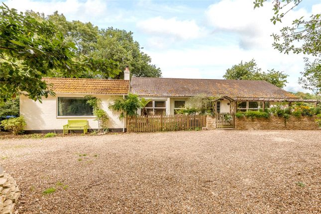 Thumbnail Detached bungalow to rent in Littleworth Road, Burnham