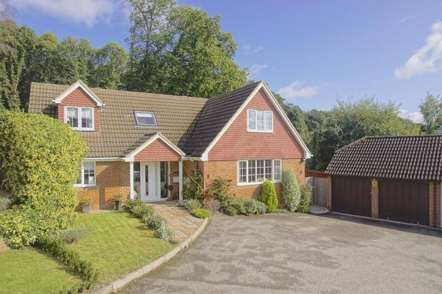 Thumbnail Property for sale in Pine Crest, Welwyn