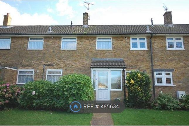 Thumbnail Terraced house to rent in Mapleford Sweep, Basildon