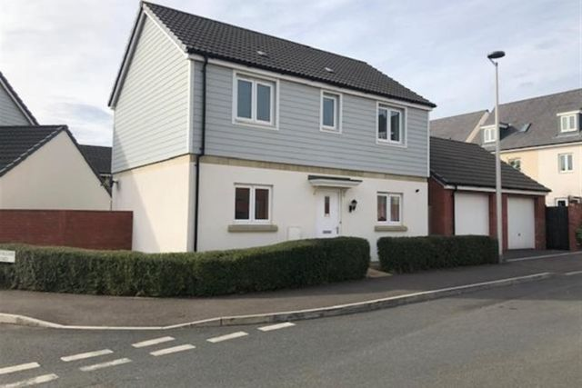 Thumbnail Detached house to rent in Vernon Crescent, Exeter