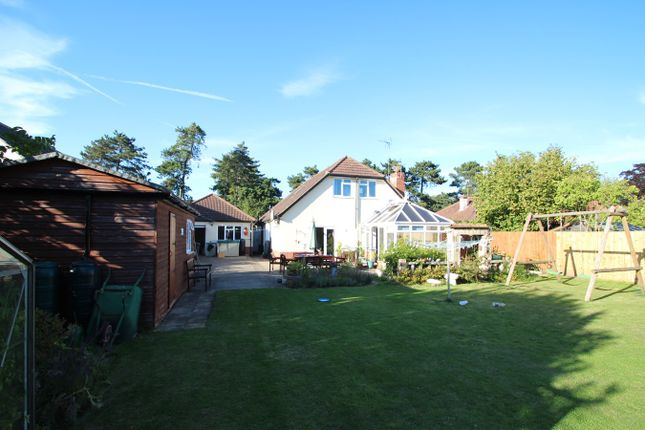 Foxhall Road Ipswich Ip3 6 Bedroom Property For Sale 44767877 Primelocation
