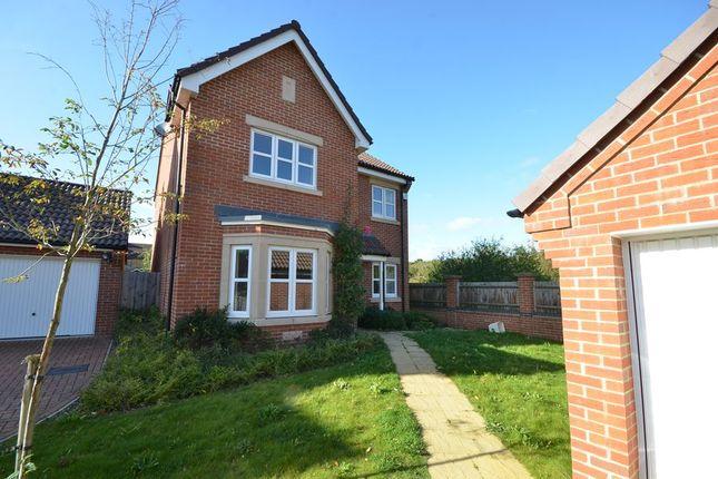 Thumbnail Detached house to rent in Binfields Farm Lane, Chineham, Basingstoke