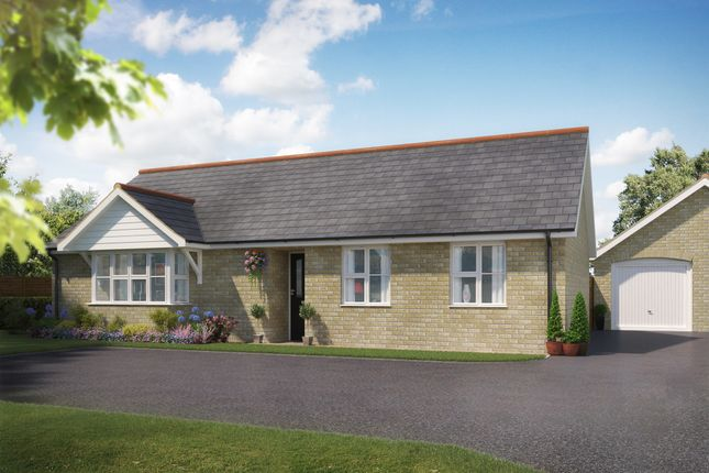 Thumbnail Detached bungalow for sale in Dunnetts Close, Ashill, Thetford