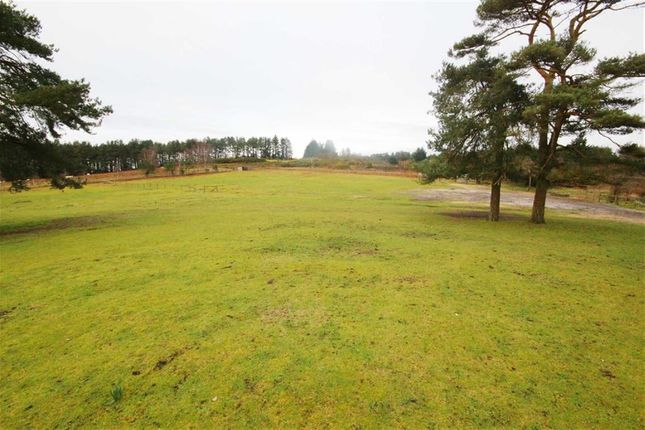 Thumbnail Property for sale in Hurn Road, Christchurch, Dorset