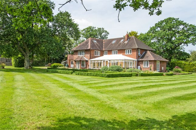Thumbnail Detached house for sale in Broad Oak, Odiham, Hook, Hampshire