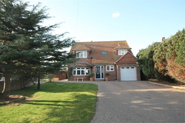 Thumbnail Detached house for sale in Old Hall Lane, Walton On The Naze