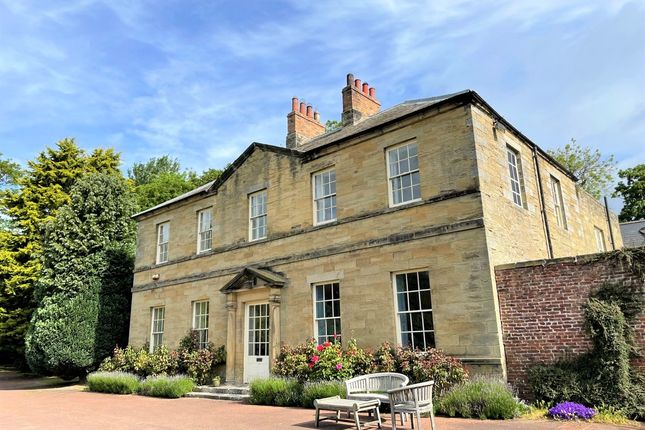 Thumbnail Detached house for sale in North Togston, Morpeth