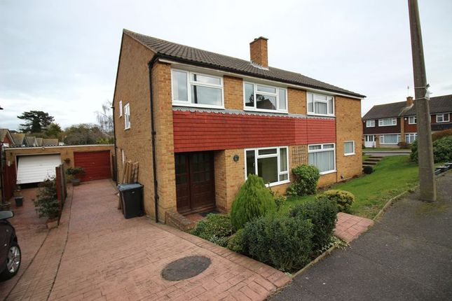 Thumbnail Semi-detached house to rent in Fir Park, Harlow