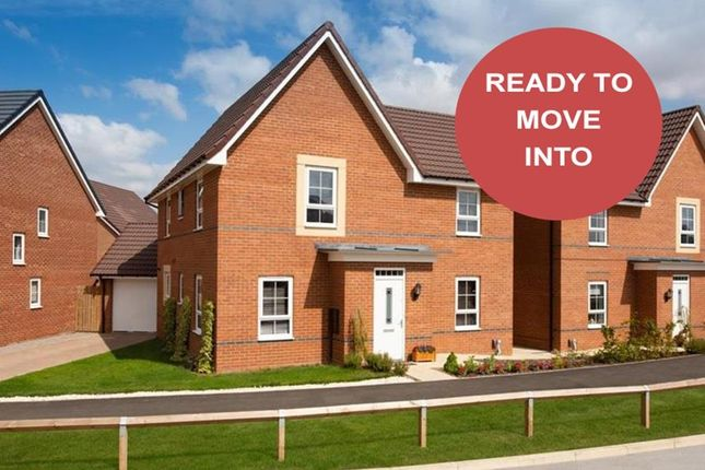 "Thumbnail Detached house for sale in ""Alderney"" at Ponds Court Business, Genesis Way, Consett"