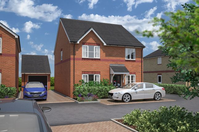 Thumbnail Detached house for sale in Rook Tree Fields, Stotfold
