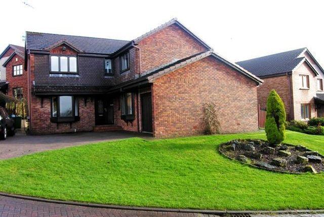 Thumbnail Detached house to rent in Mclaren Grove, East Kilbride, Glasgow