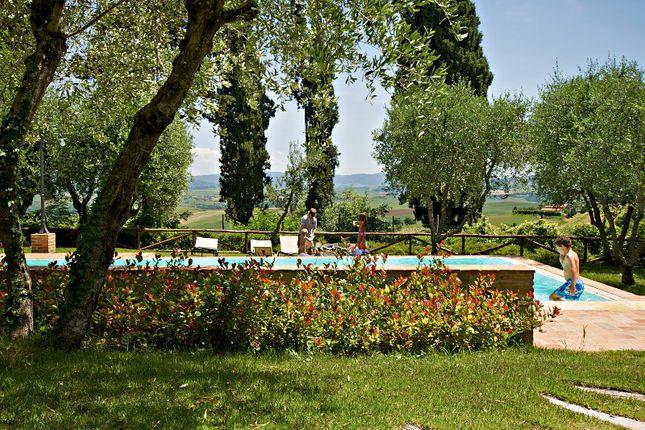 Swimming Pool of Lajatico, Volterra, Pisa, Tuscany, Italy