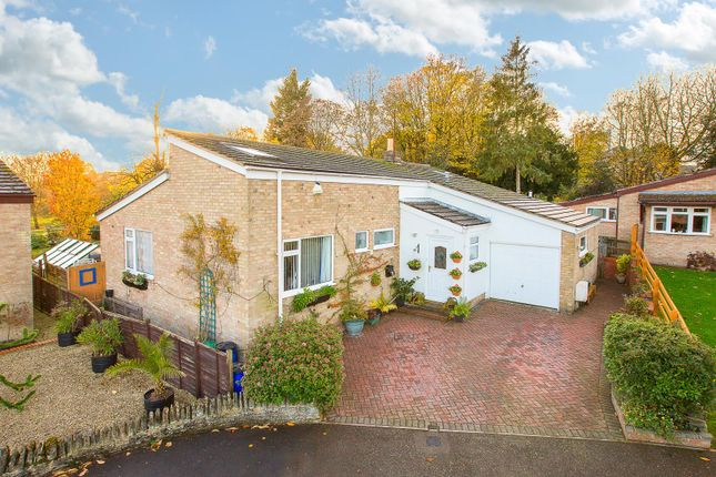 Thumbnail Detached bungalow for sale in The Lawns, Twywell