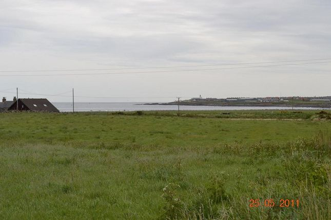 Thumbnail Land for sale in Pittendrum Steadings, Sandhaven