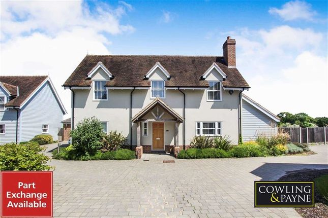 Thumbnail Detached house for sale in The Paddocks, Southend Road, Essex