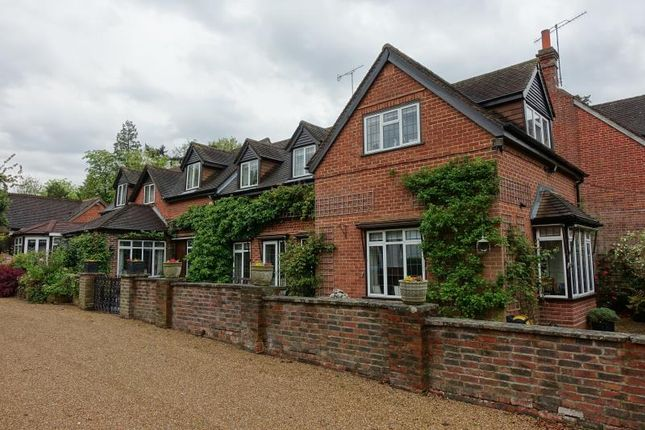 Thumbnail Detached house to rent in Blindley Heath, Lingfield, Surrey