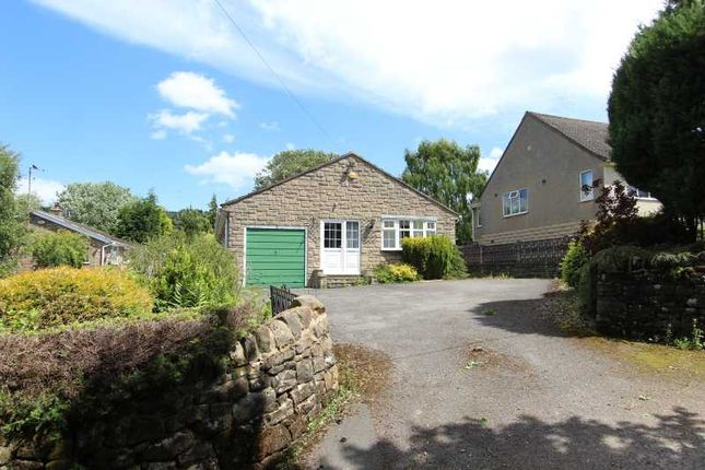 Thumbnail Detached bungalow for sale in The Knoll, Tansley