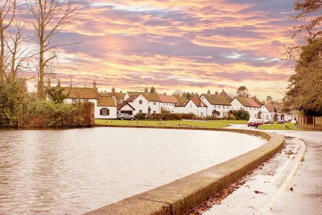 Village Pond of Pudding Gate, Bishop Burton, Beverley HU17
