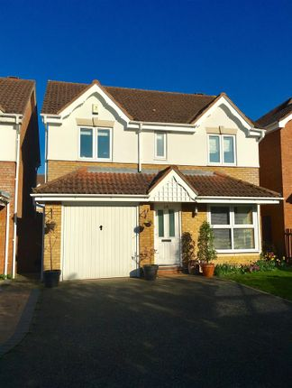 Thumbnail Property to rent in Challinor, Church Langley, Harlow