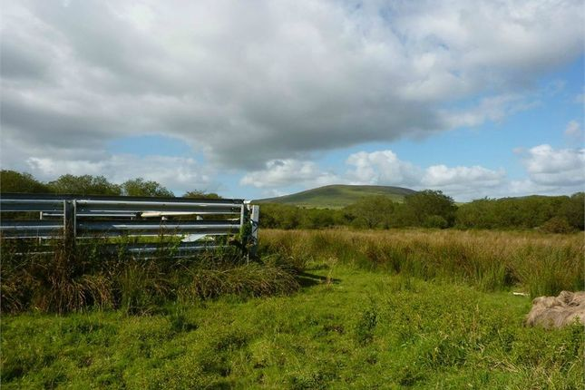 Thumbnail Land for sale in Land At Wern Farm, Rhosfach, Clynderwen, Pembrokeshire