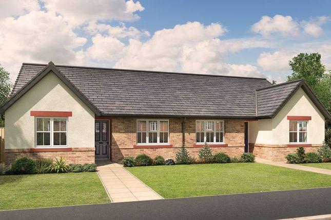 "Thumbnail Bungalow for sale in ""Stafford"" at Bongate, Appleby-In-Westmorland"