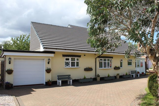 Thumbnail Detached bungalow for sale in Salters Lane, Tamworth