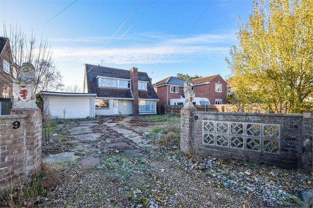 Thumbnail Detached bungalow for sale in Blackberry Road, Stanway, Colchester, Essex
