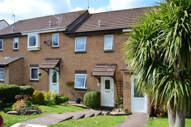 Thumbnail Property to rent in Mellons Close, Newton Abbot, Devon