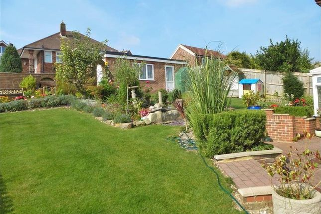 Thumbnail Detached house for sale in Eldred Avenue, Brighton