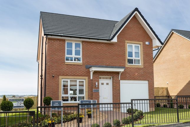 """Thumbnail Detached house for sale in """"Crichton"""" at Red Deer Road, Cambuslang, Glasgow"""