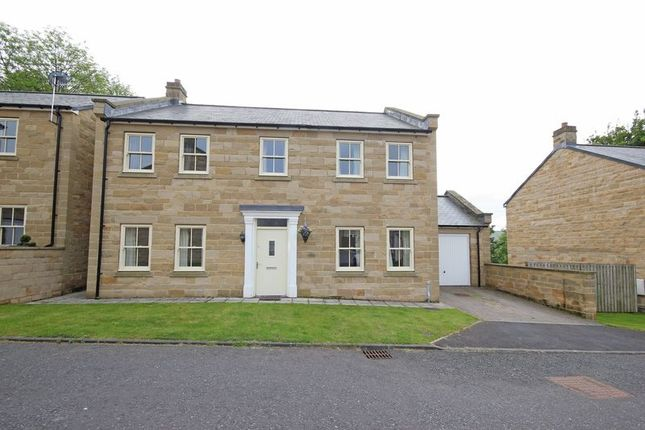 Thumbnail Detached house for sale in Garden Terrace, Haltwhistle