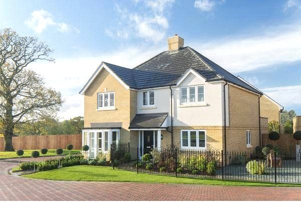 Thumbnail Detached house for sale in Bagshot Road, Knaphill, Surrey