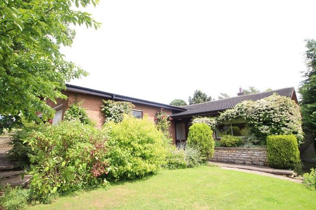 Thumbnail Detached bungalow to rent in Hillside Drive, Grantham