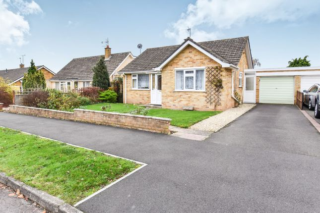 Thumbnail Bungalow for sale in Upcot Crescent, Taunton