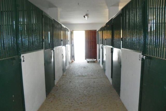 Inside Stables of Spain, Málaga, Coín
