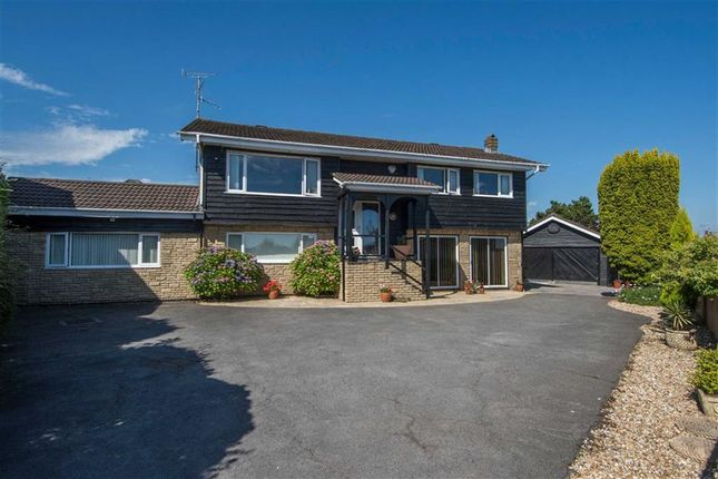 Thumbnail Detached house for sale in Coedmor, Swansea