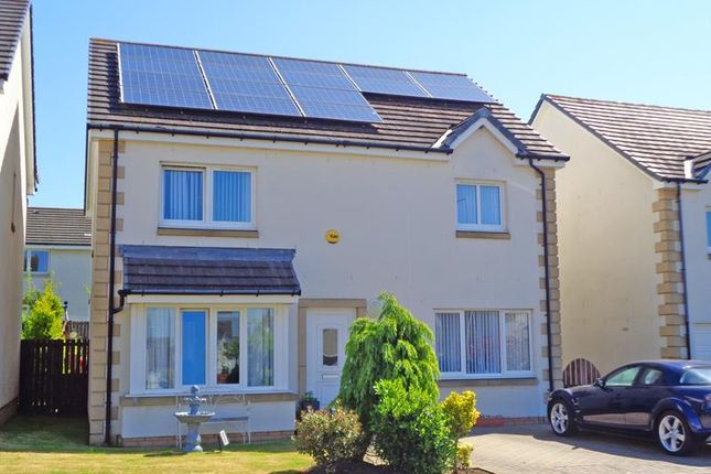 Thumbnail Detached house for sale in Kilmux Park, Kennoway, Leven