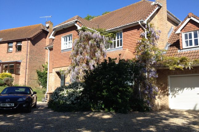 Thumbnail Detached house to rent in Green Lane, Medham Village, Cowes, Isle Of Wight