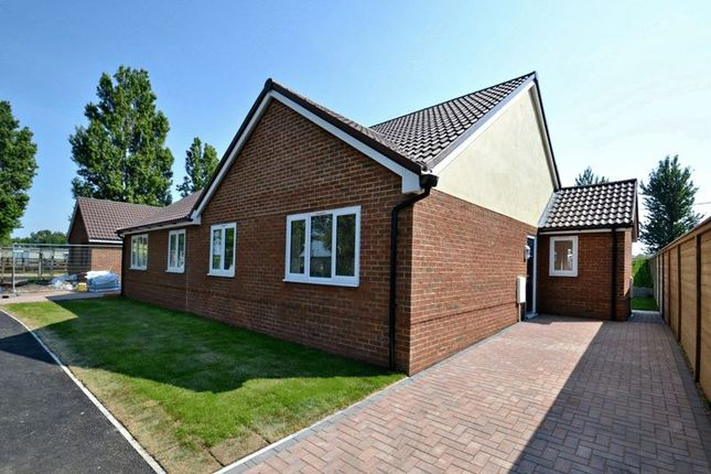 Thumbnail Bungalow for sale in Shellness Road, Leysdown-On-Sea, Sheerness