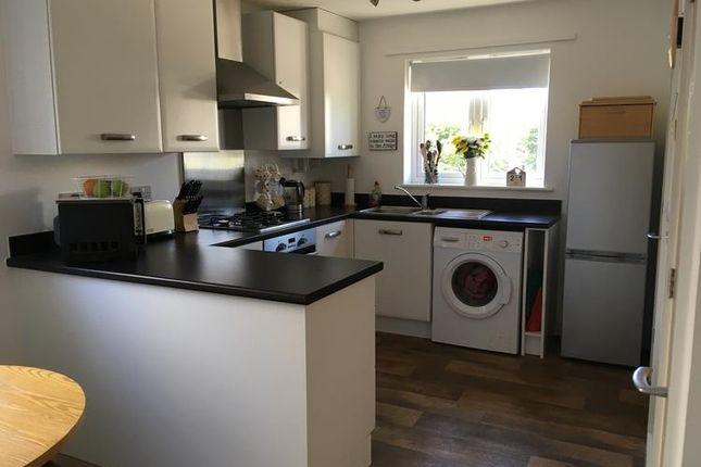 Kitchen of Kellands Lane, Okehampton EX20