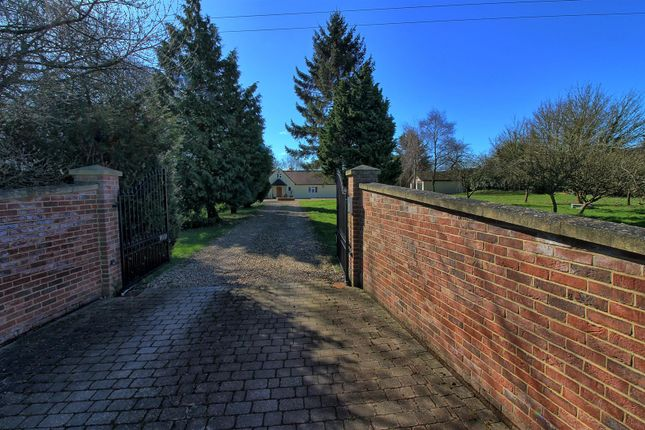 Thumbnail Detached bungalow for sale in Cherry Green Lane, Westmill, Buntingford