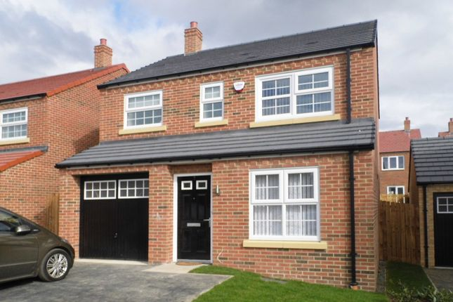 Thumbnail Property to rent in Aspen Way, Morpeth