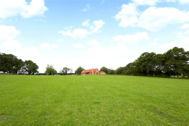 Picture No. 07 of Ridgelands Farm, Kent Street, Wineham, Nr Cowfold RH13