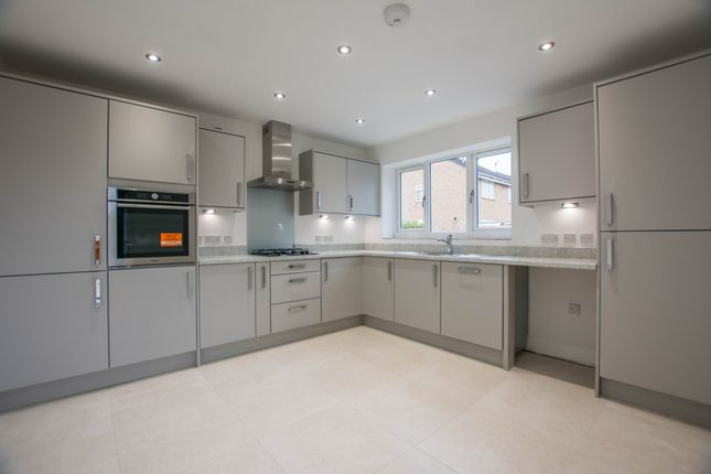 Thumbnail Detached house for sale in Henley Drive, Droitwich