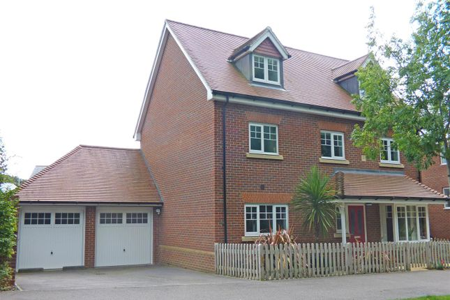 Thumbnail Detached house for sale in The Drive, Hellingly, Hailsham