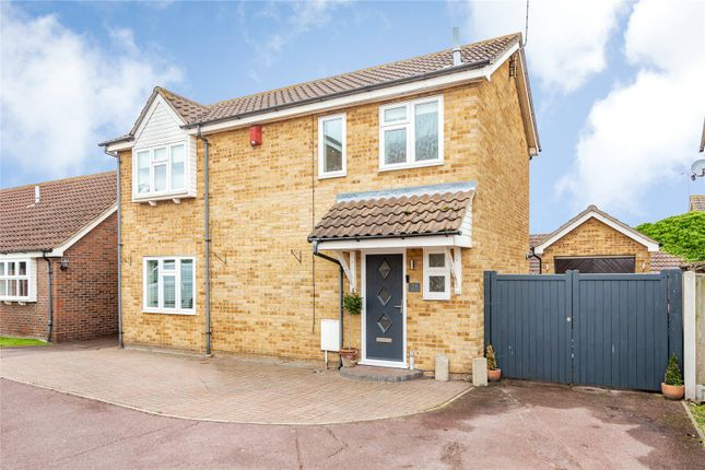 Thumbnail Detached house for sale in Purleigh Close, Burnt Mills, Essex