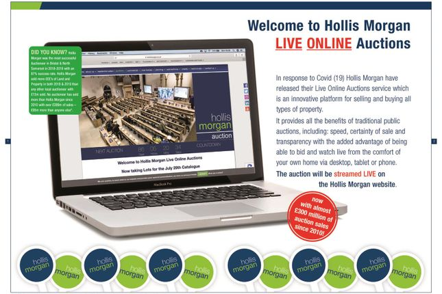 Hollis Morgan Auction