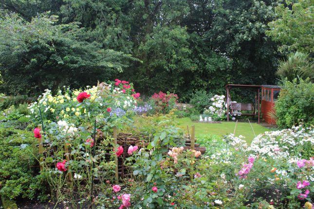 Rear Garden of Pentrefelin, Amlwch LL68