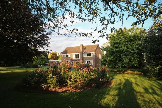 Thumbnail Detached house for sale in North Street, Winterton, Scunthorpe