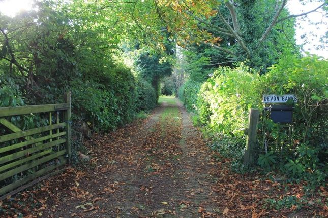 Thumbnail Land for sale in West Hill Road, West Hill, Ottery St. Mary